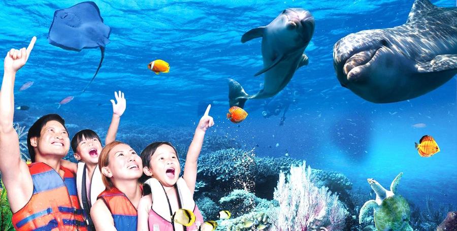 罗源湾海洋世界,领略海底风光海洋世界分为浅海珊瑚礁区、儿童互动区、海洋科普区 、梦幻水母宫区、大洋区、热带雨林区、两栖动物区、海洋表演剧场等八大主题区域。罗源湾海洋世界热情狂野的祭祀舞蹈、真刀实枪的近身肉搏、高空钢丝打斗、自由花式降落、生死转轮、扣人心弦的殊死搏斗、伴随神龙的腾空而起,爆发出气势恢宏的大海啸,都将在8200平方米的空间上演,带您领略空中翱翔、海上冲锋陷阵的酣畅淋漓。