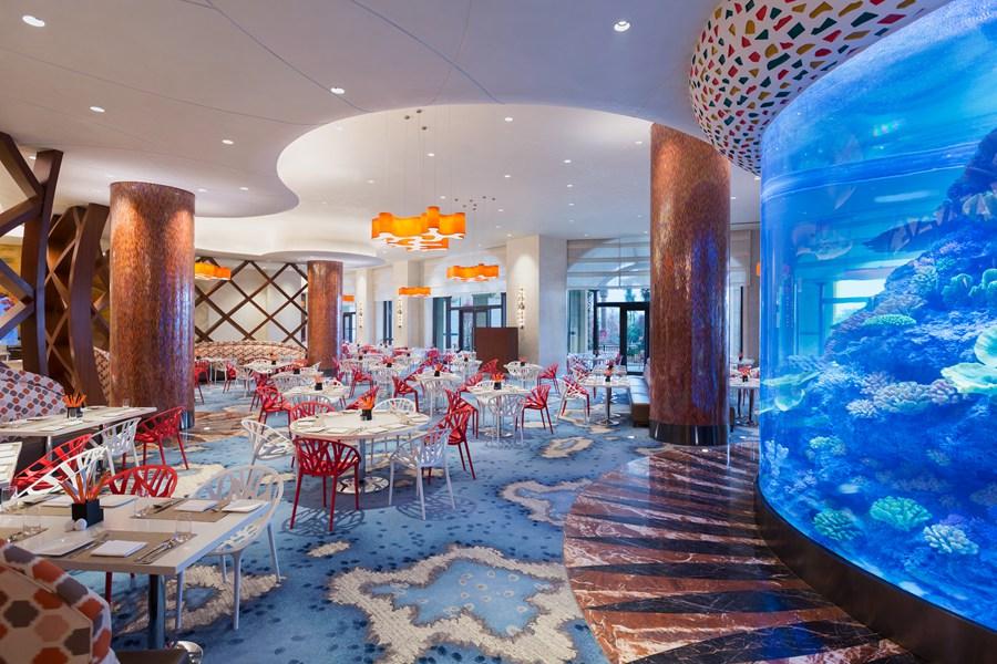 广东  珠海 长隆横琴湾酒店(海豚旗舰店)