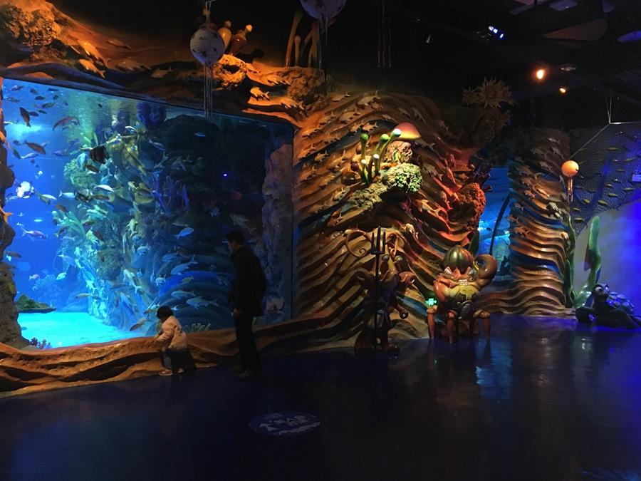 重庆 重庆幻太奇海洋世界