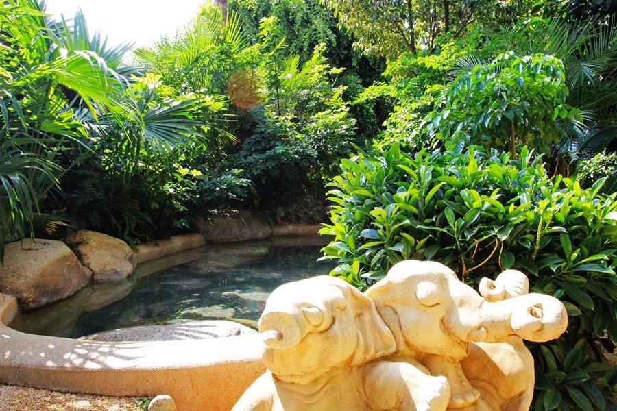 云南| 昆明 海丽宾雅度假酒店温泉,静谧泡泉