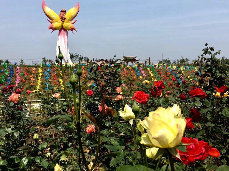 安徽| 合肥 花千谷文化旅游风景区,多彩美境
