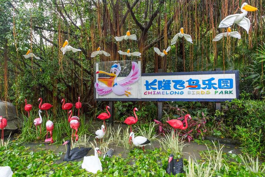 廣州長隆飛鳥樂園門票|長隆飛鳥樂園門票|長隆飛鳥樂園一日遊推薦